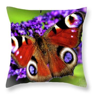 Pristine Peacock Throw Pillow
