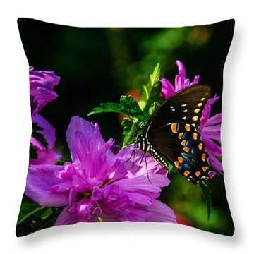 Private Dancer Throw Pillow
