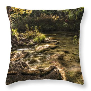 Throw Pillow featuring the photograph Private Retreat by Tamyra Ayles