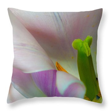 Private Showing Throw Pillow