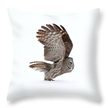 Proceed To Runway For Take Off Throw Pillow