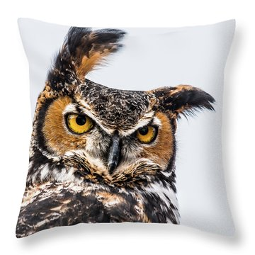Professor Wise Throw Pillow