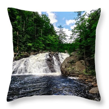 Profile Falls Bristol N H Throw Pillow