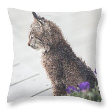 Profile In Kitten Throw Pillow