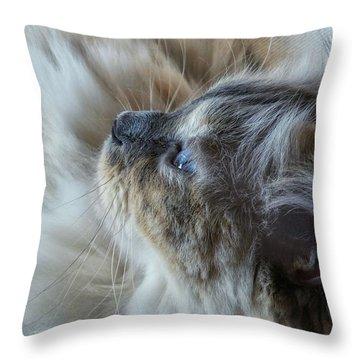 Profile Throw Pillow by Karen Stahlros