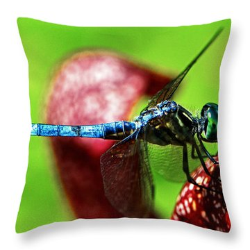 Throw Pillow featuring the photograph Profile Of A Dragonfly 003 by George Bostian