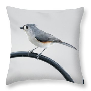 Profile Of A Tufted Titmouse Throw Pillow