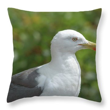 Throw Pillow featuring the photograph Profile Of Adult Seagull by Jacek Wojnarowski