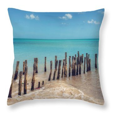 Throw Pillow featuring the photograph Progresso Beach by Ray Devlin
