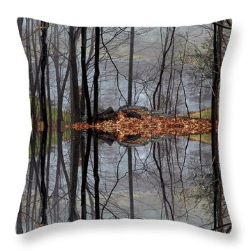 Projecting Contentment Throw Pillow