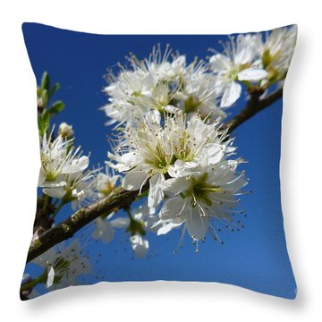 Promise Of Spring Throw Pillow by Jean Bernard Roussilhe