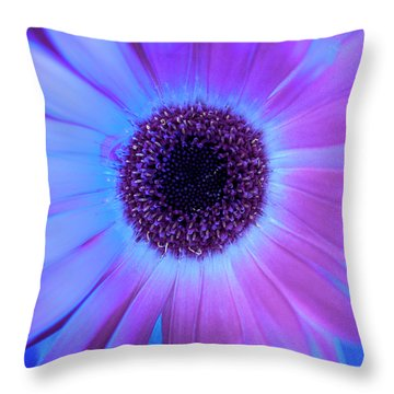 Throw Pillow featuring the photograph Promises Of Blue And Pink by Christi Kraft