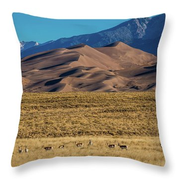 Pronghorn Sunrise Throw Pillow