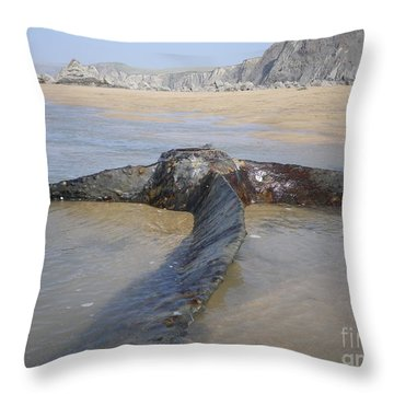 Propeller Steamship Belem Shipwreck Throw Pillow