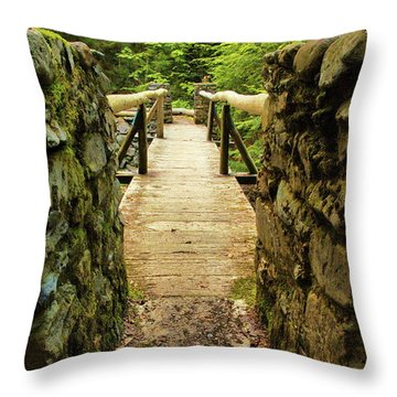 Prospective Memorial Bridge Throw Pillow