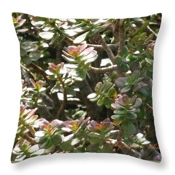 Prosperity And Success To You Throw Pillow by Doreen Whitelock