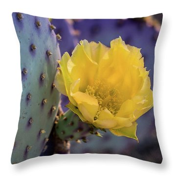 Protected Beauty Throw Pillow