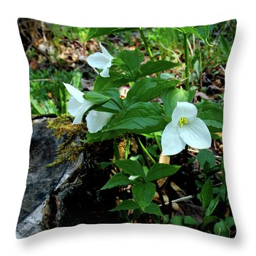 Throw Pillow featuring the photograph Protected Wild Trillium  by LeeAnn McLaneGoetz McLaneGoetzStudioLLCcom