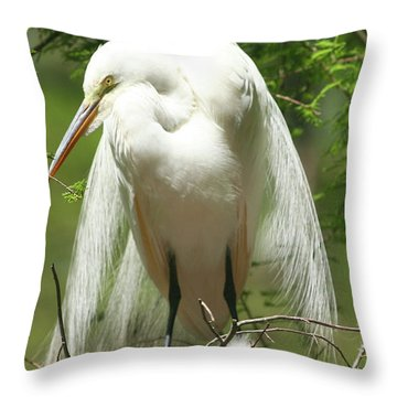 Protecting Throw Pillow