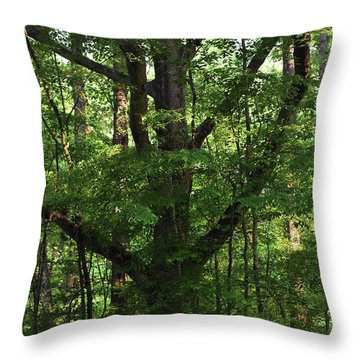 Throw Pillow featuring the photograph Protecting The Children by Skip Willits