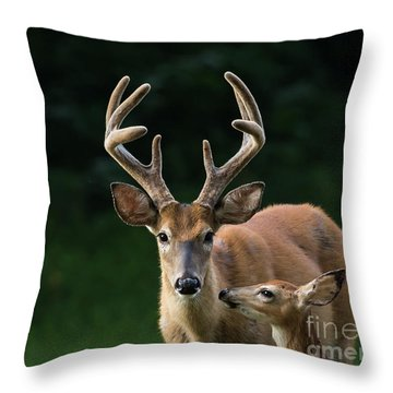 Throw Pillow featuring the photograph Protective Dad by Andrea Silies