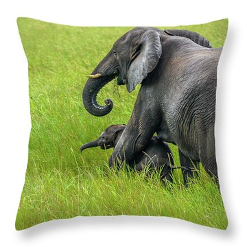 Protective Elephant Mom Throw Pillow