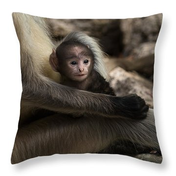 Protectiveness Throw Pillow by Ramabhadran Thirupattur
