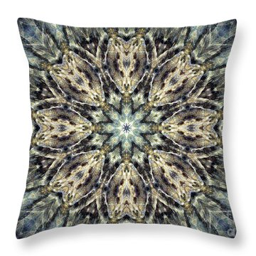 Sacred Sojourn Throw Pillow