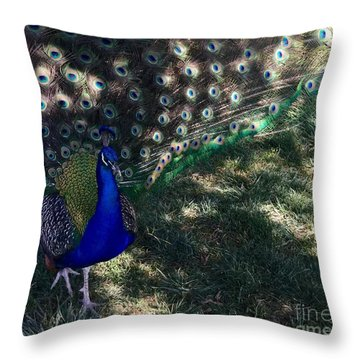 Proud As A Peacock Throw Pillow by Patricia E Sundik
