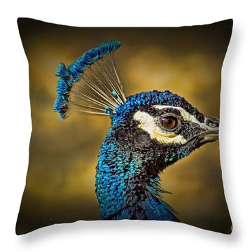 Proud As A Peacock Throw Pillow