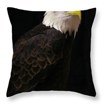 Throw Pillow featuring the photograph Proud by Douglas Stucky