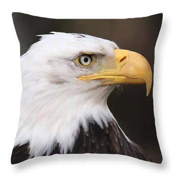 Proud Eagle Throw Pillow by Angie Vogel