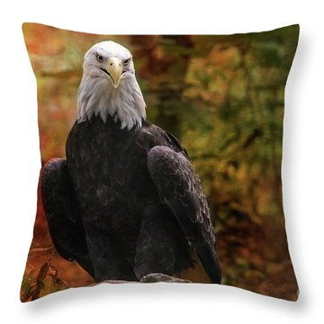 Images For Merchandise Throw Pillows