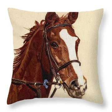 Proud - Portrait Of A Thoroughbred Horse Throw Pillow by Patricia Barmatz