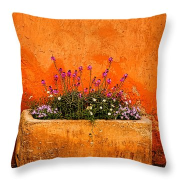 Throw Pillow featuring the photograph Provencal Melody by Olivier Le Queinec