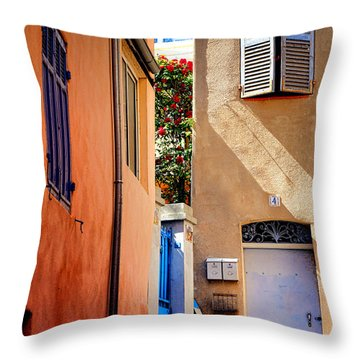 Throw Pillow featuring the photograph Provencal Passage  by Olivier Le Queinec
