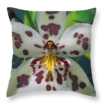Provoking Throw Pillow by Tina Marie