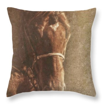 Prowess And Power Throw Pillow