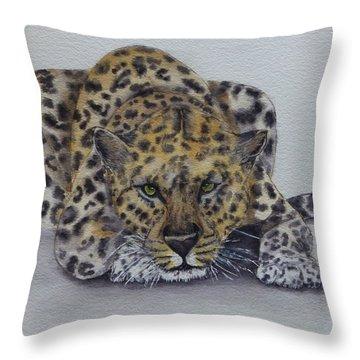 Prowling Leopard Throw Pillow