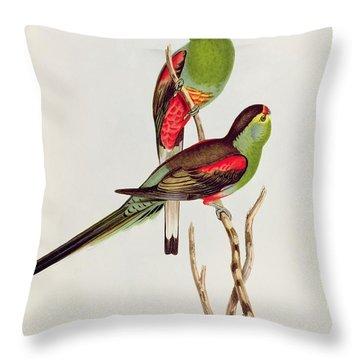 Psephotus Pulcherrimus Throw Pillow by John Gould