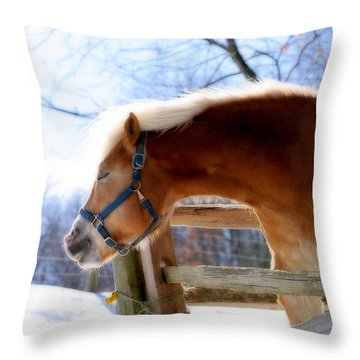 Throw Pillow featuring the photograph Pssssssh.....it's Not Cold by Angela Rath