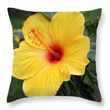 Pua Aloalo Throw Pillow