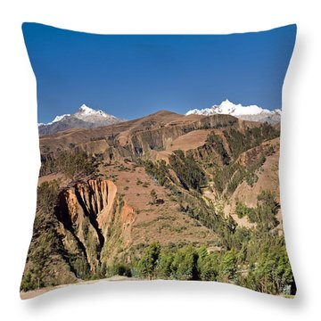 Puca Ventana Throw Pillow by Aivar Mikko