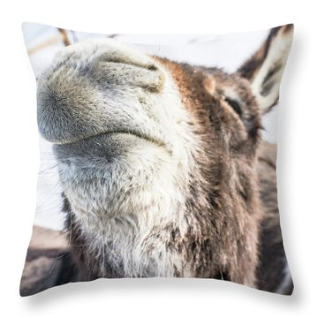 Pucker Up, Baby Throw Pillow