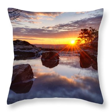 Puddle Paradise Throw Pillow