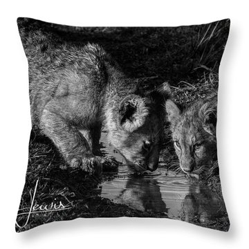 Throw Pillow featuring the photograph Puddle Time by Karen Lewis