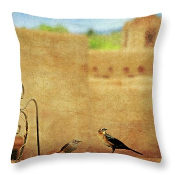Throw Pillow featuring the photograph Pueblo Village Settlers by Diana Angstadt