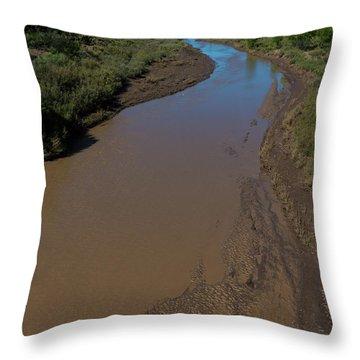 Puerco River Flows Throw Pillow
