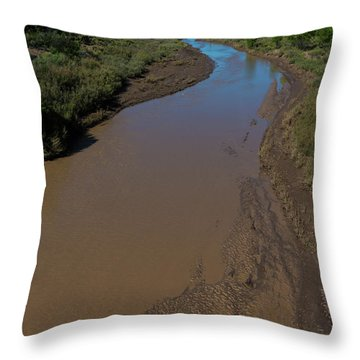 Puerco River Flows Throw Pillow