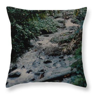 Puerto Rico Water Throw Pillow by Rob Hans